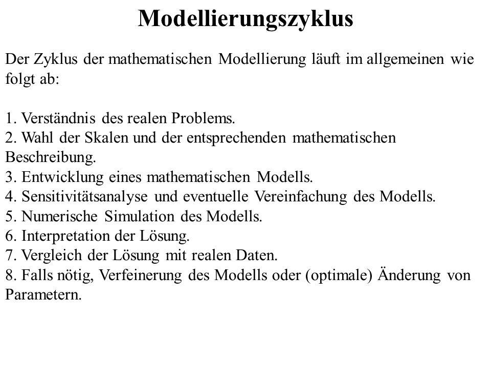 Modellierungszyklus Der Zyklus der mathematischen Modellierung läuft im allgemeinen wie folgt ab: 1. Verständnis des realen Problems.