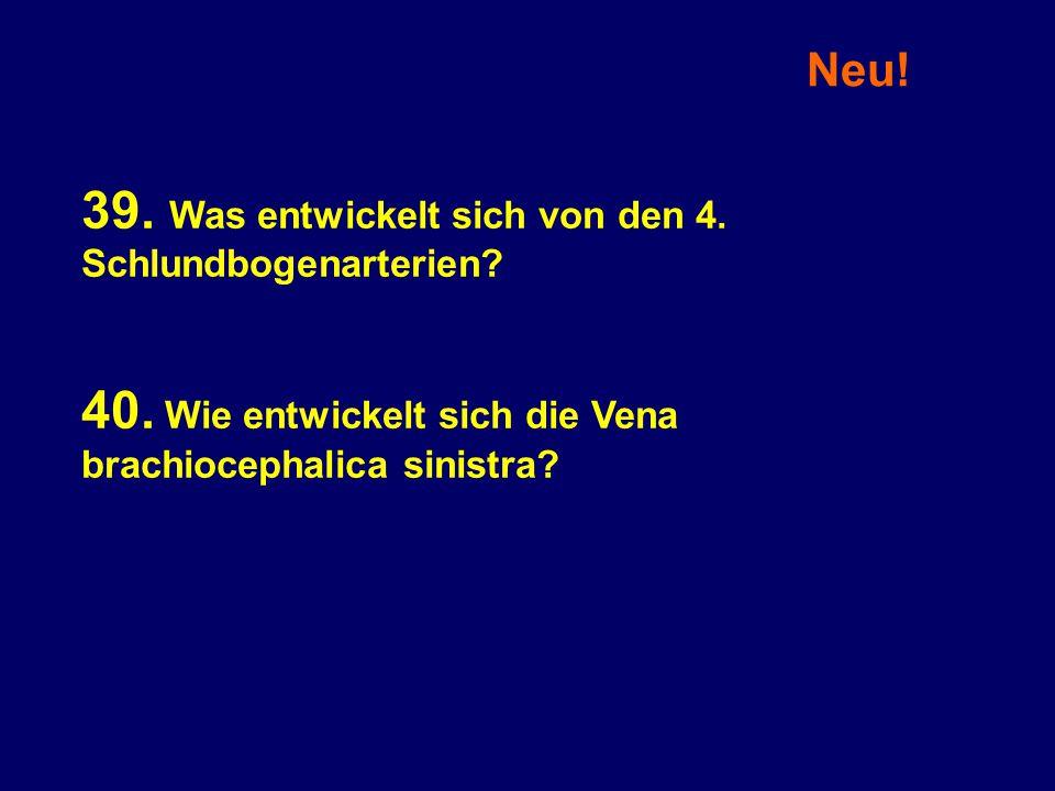 39. Was entwickelt sich von den 4. Schlundbogenarterien