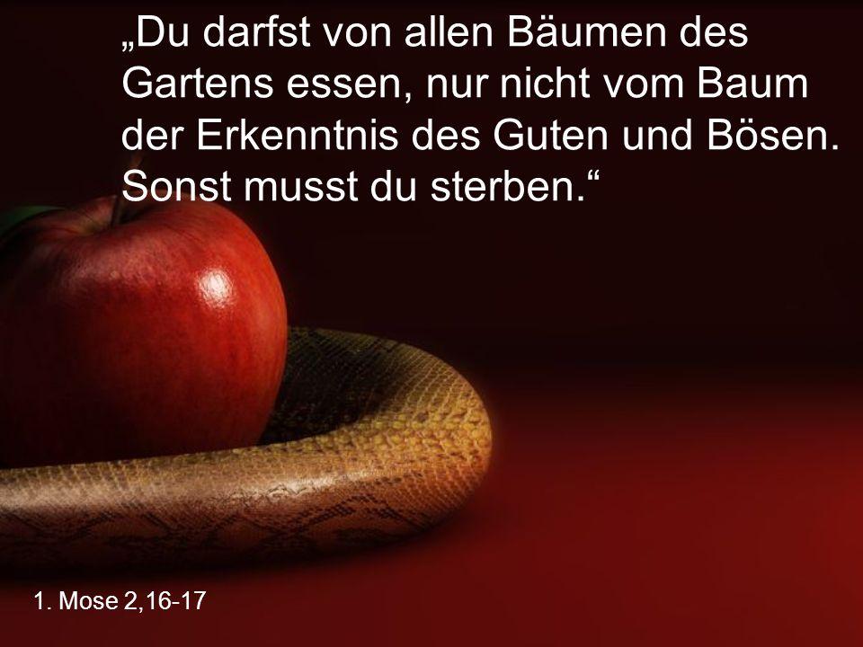 """""""Du darfst von allen Bäumen des Gartens essen, nur nicht vom Baum der Erkenntnis des Guten und Bösen. Sonst musst du sterben."""