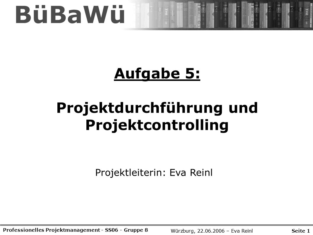 Projektdurchführung und