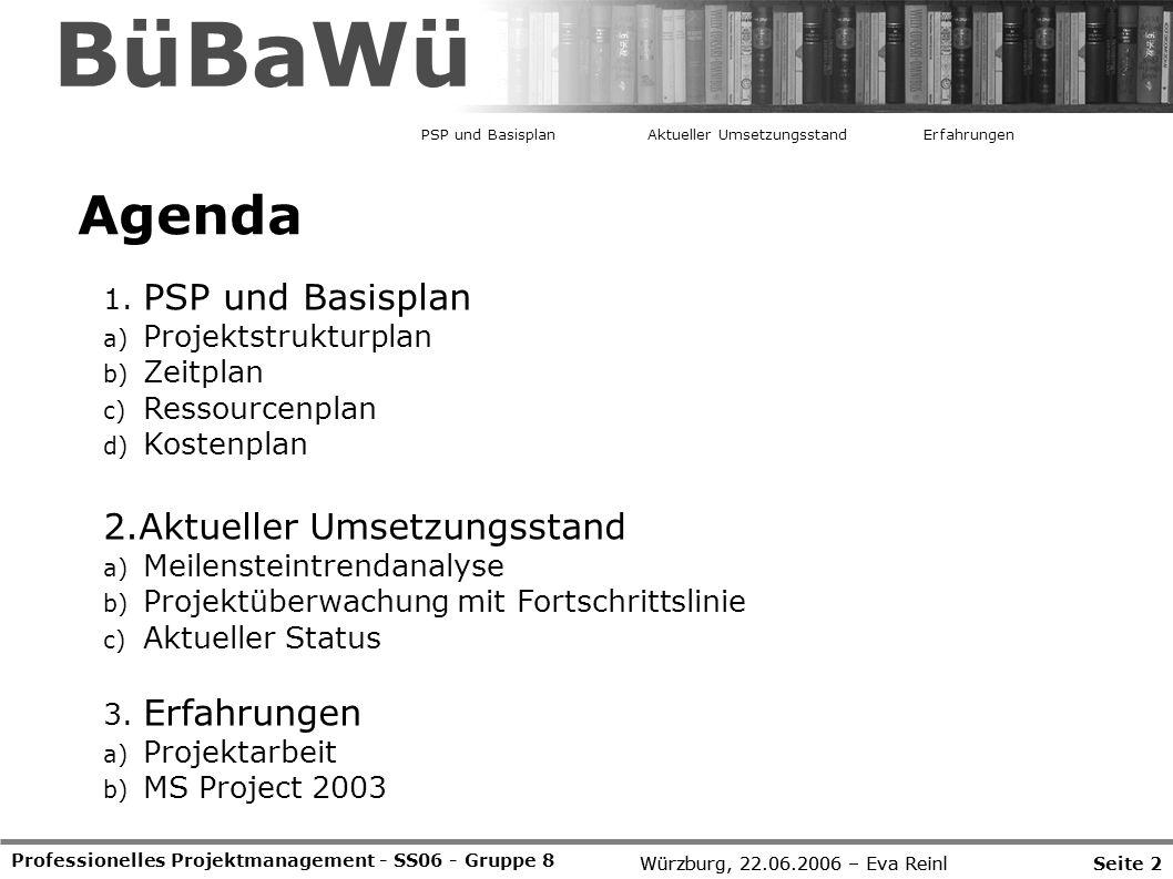 BüBaWü Agenda PSP und Basisplan 2.Aktueller Umsetzungsstand