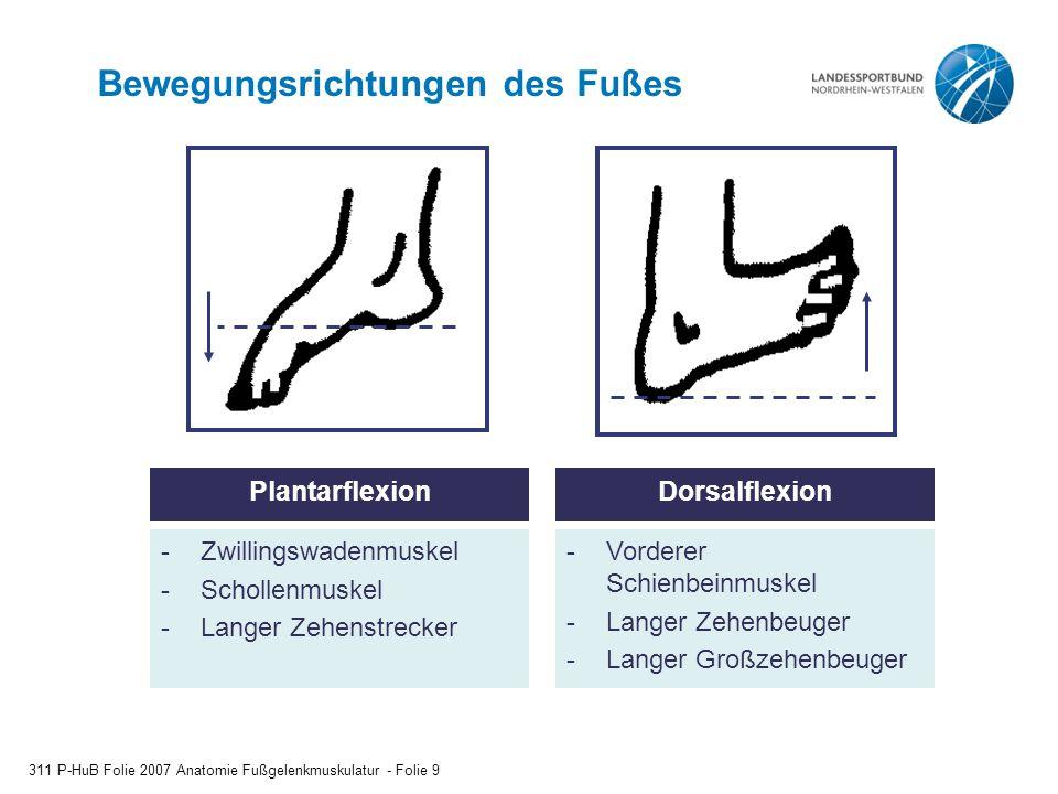 Bewegungsrichtungen des Fußes