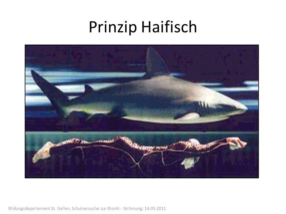 Prinzip Haifisch Bildungsdepartement St. Gallen, Schulversuche zur Bionik - Strömung; 14.05.2011