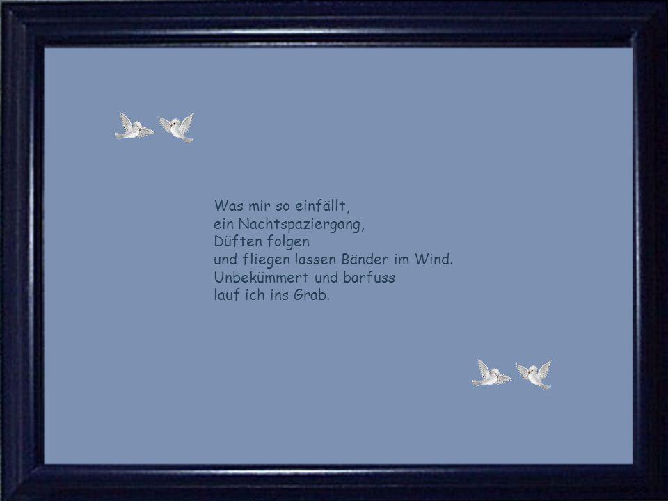 Was mir so einfällt, ein Nachtspaziergang, Düften folgen und fliegen lassen Bänder im Wind.