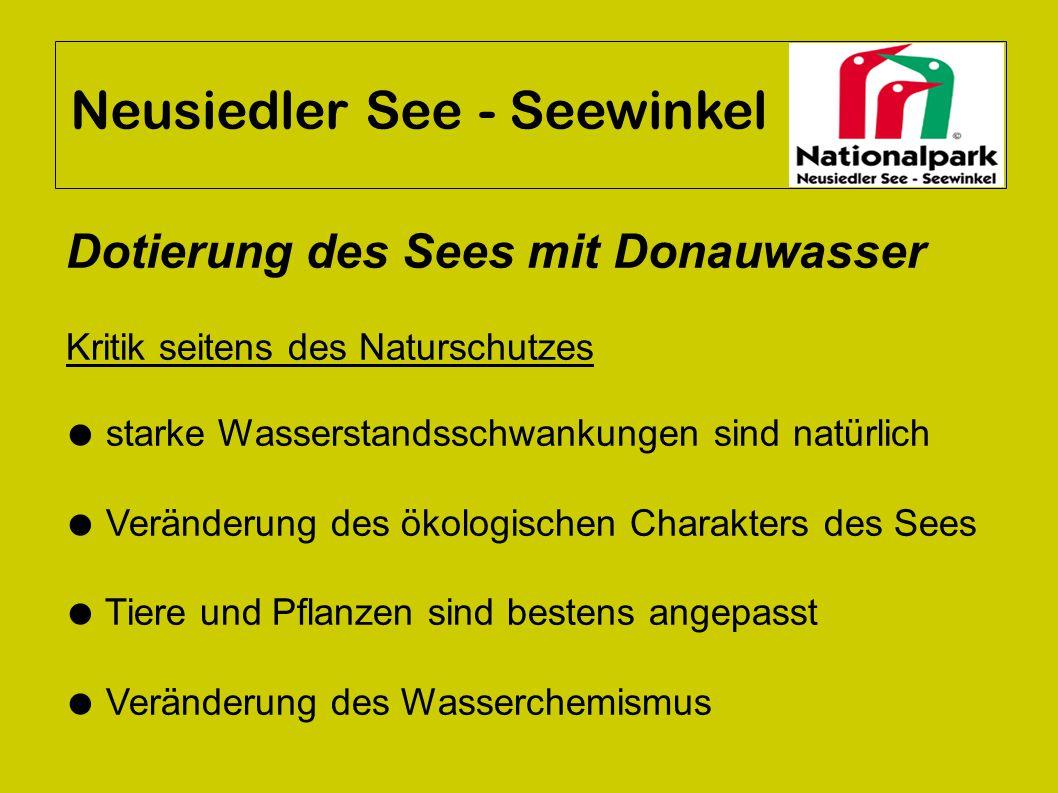 Neusiedler See - Seewinkel