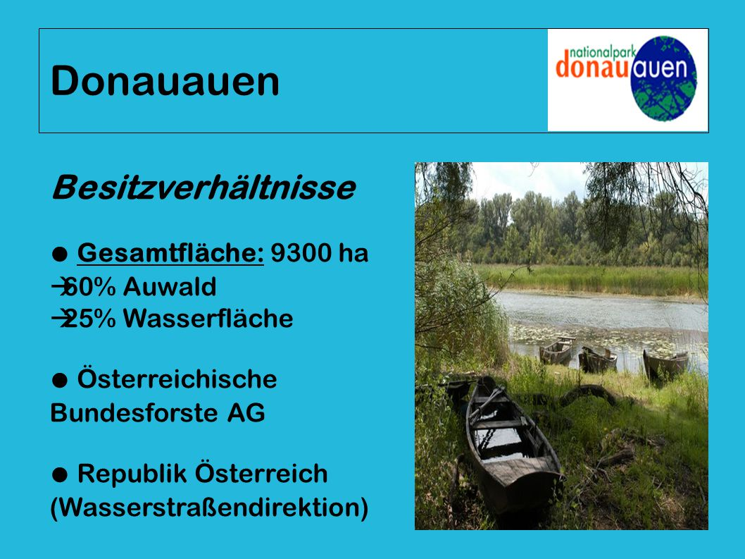 Donauauen Besitzverhältnisse ● Gesamtfläche: 9300 ha 60% Auwald