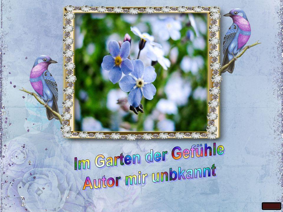 Im Garten der Gefühle Autor mir unbkannt