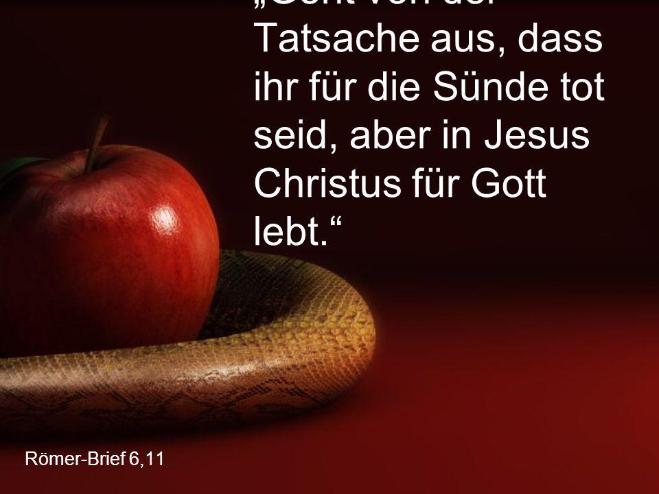 """""""Geht von der Tatsache aus, dass ihr für die Sünde tot seid, aber in Jesus Christus für Gott lebt."""