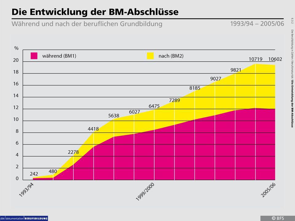 6.3.2 Die Entwicklung der BM-Abschlüsse