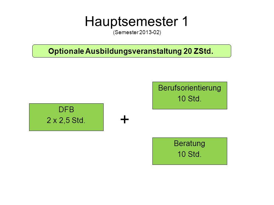 Hauptsemester 1 (Semester 2013-02)