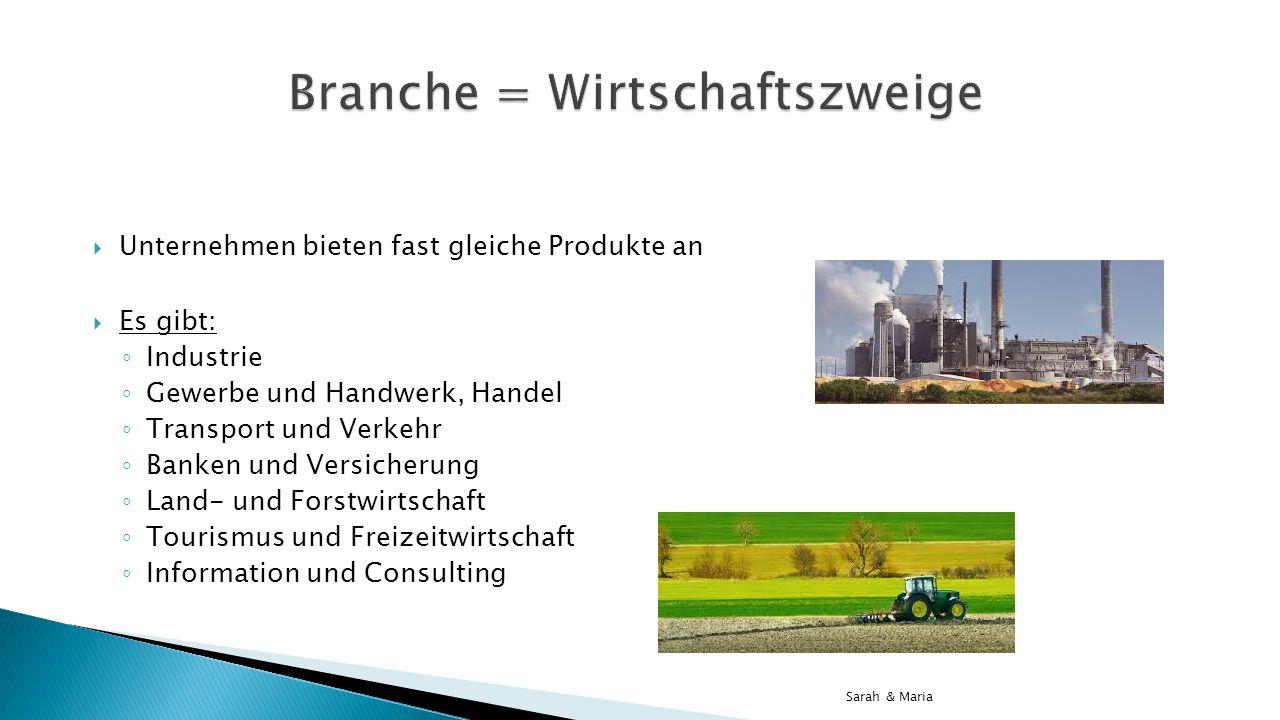 Branche = Wirtschaftszweige