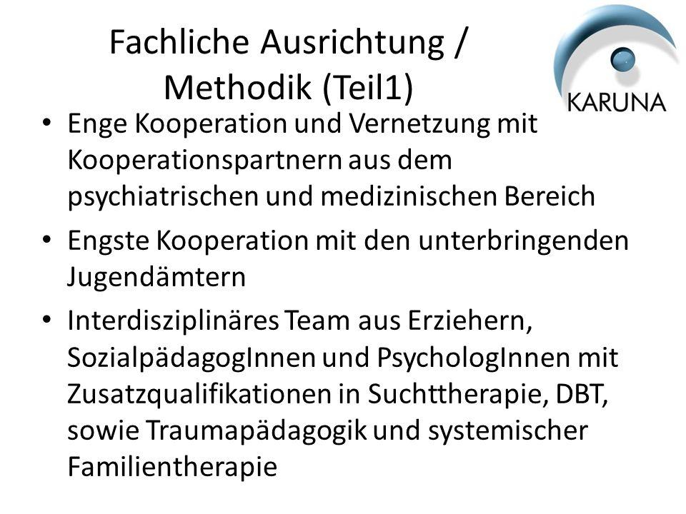 Fachliche Ausrichtung / Methodik (Teil1)