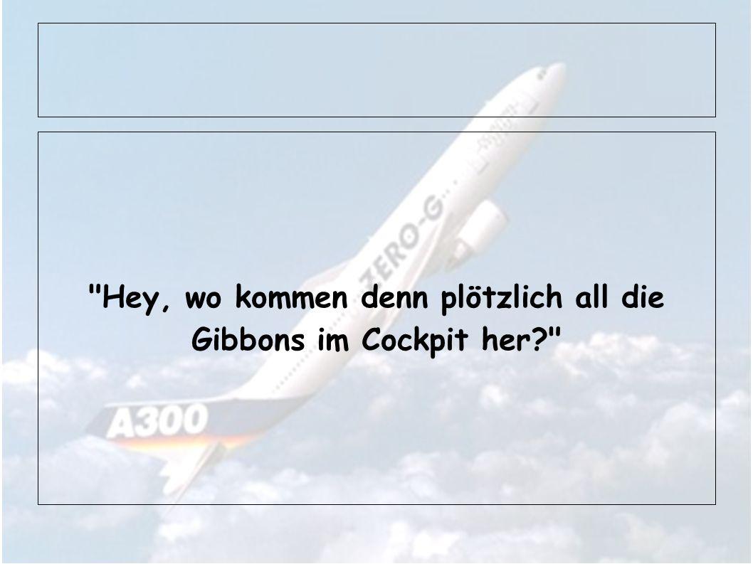 Hey, wo kommen denn plötzlich all die Gibbons im Cockpit her