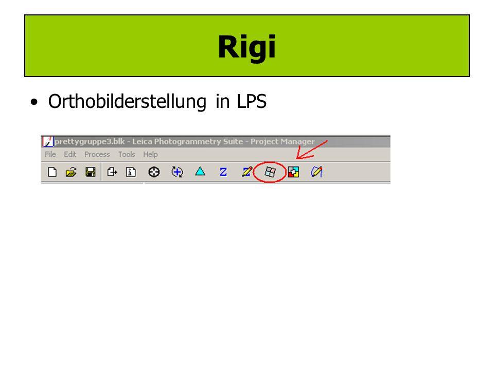 Rigi Orthobilderstellung in LPS