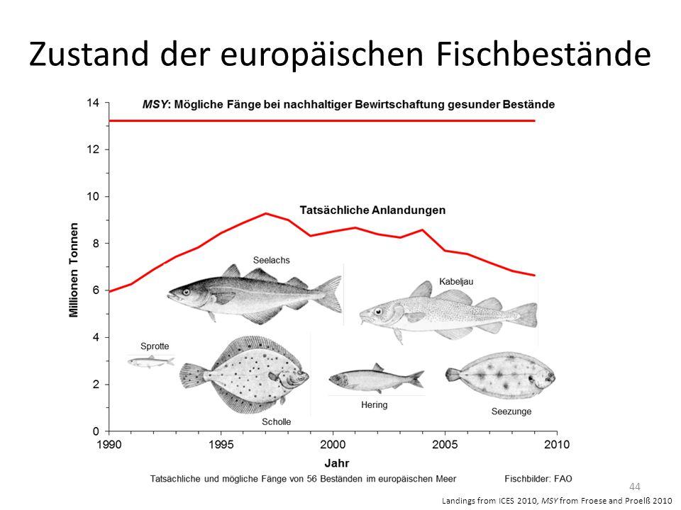Zustand der europäischen Fischbestände