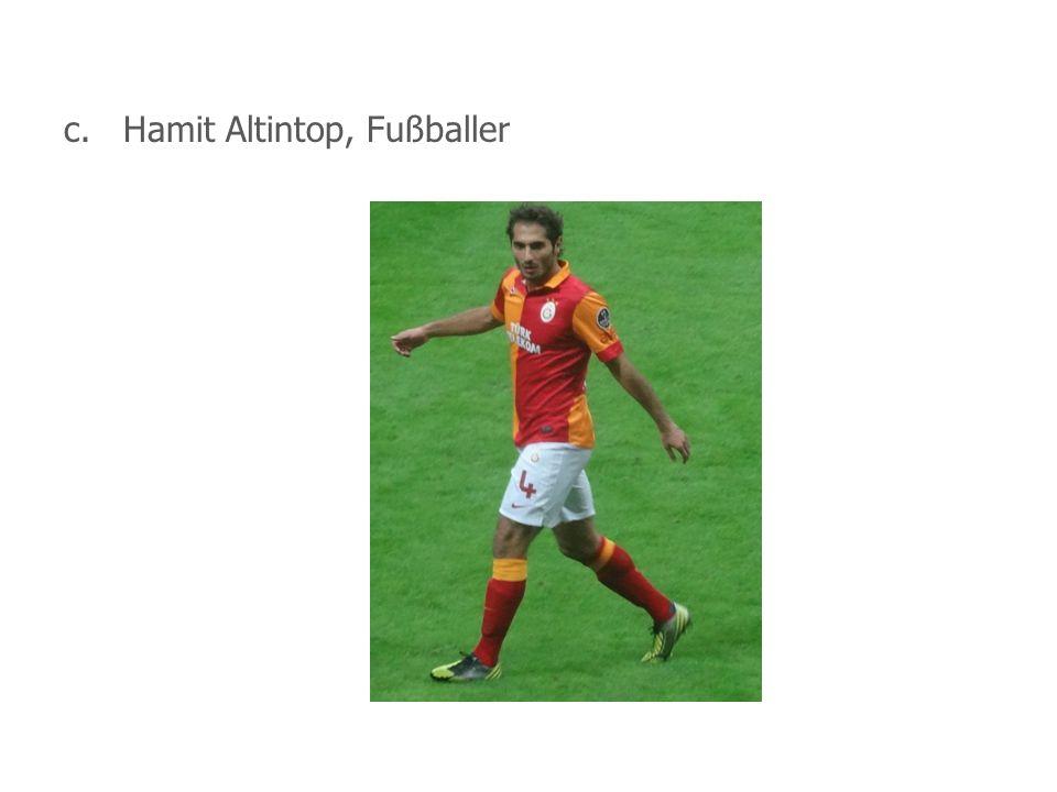 c. Hamit Altintop, Fußballer