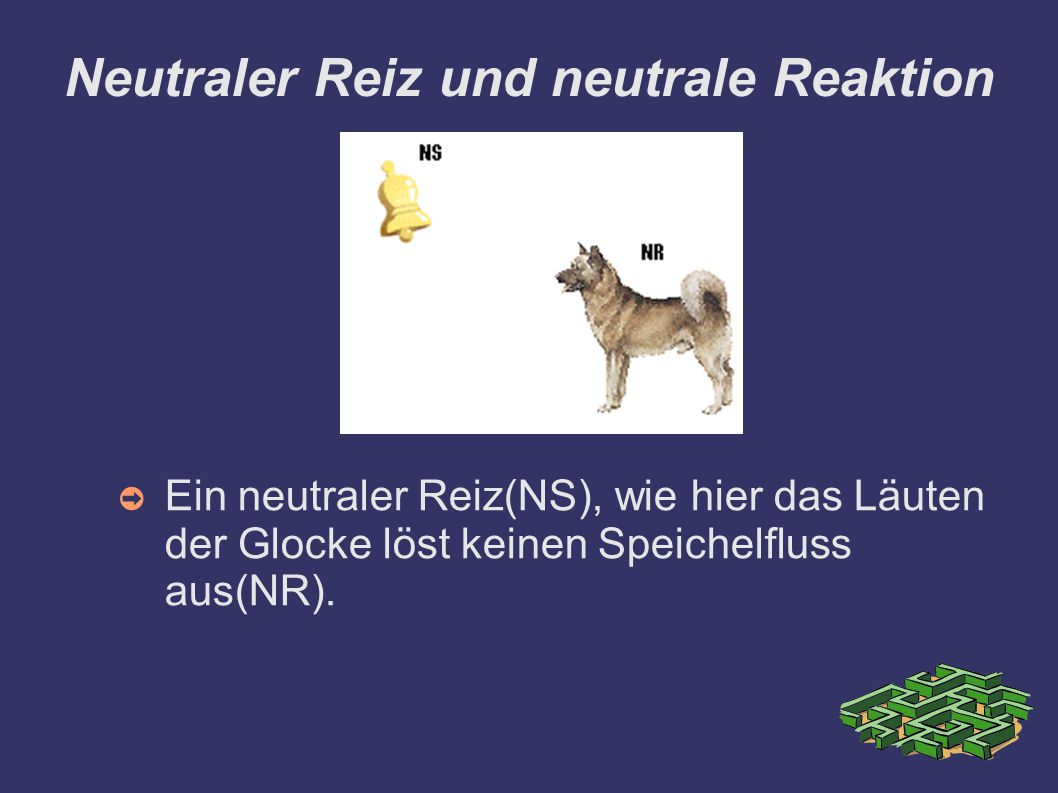 Neutraler Reiz und neutrale Reaktion