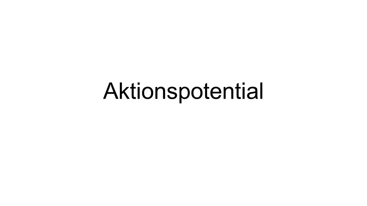 Aktionspotential