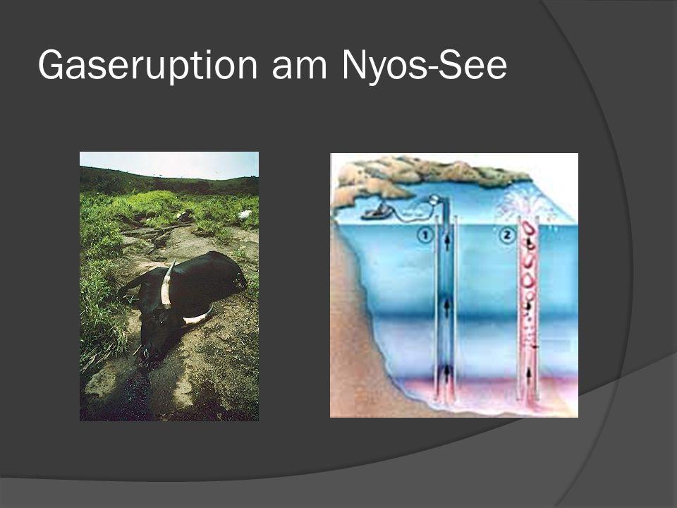 Gaseruption am Nyos-See