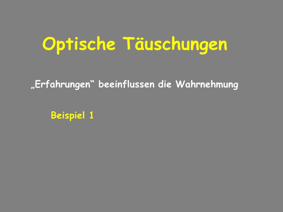 """Optische Täuschungen """"Erfahrungen beeinflussen die Wahrnehmung"""
