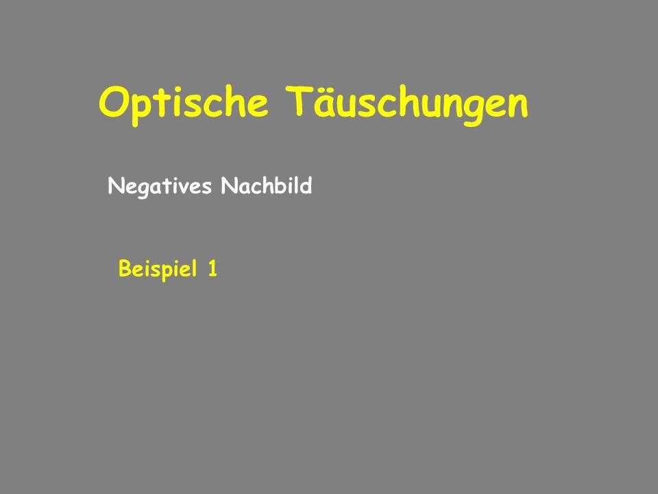 Optische Täuschungen Negatives Nachbild Beispiel 1