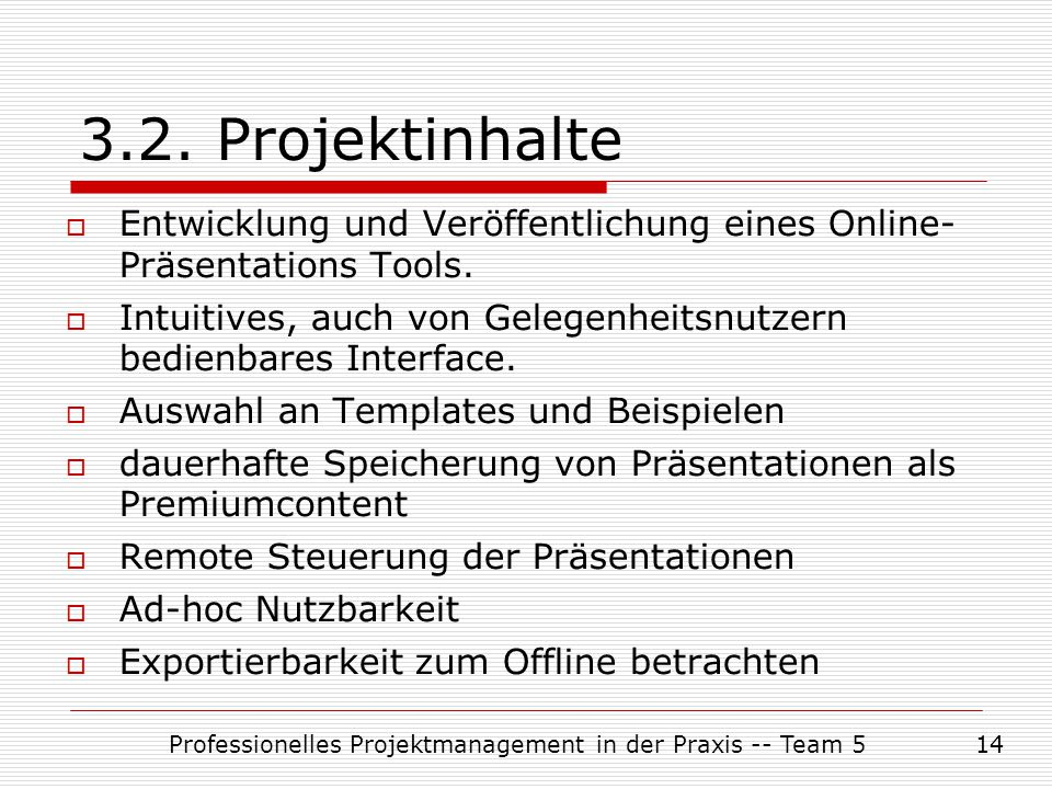 Professionelles Projektmanagement in der Praxis -- Team 5