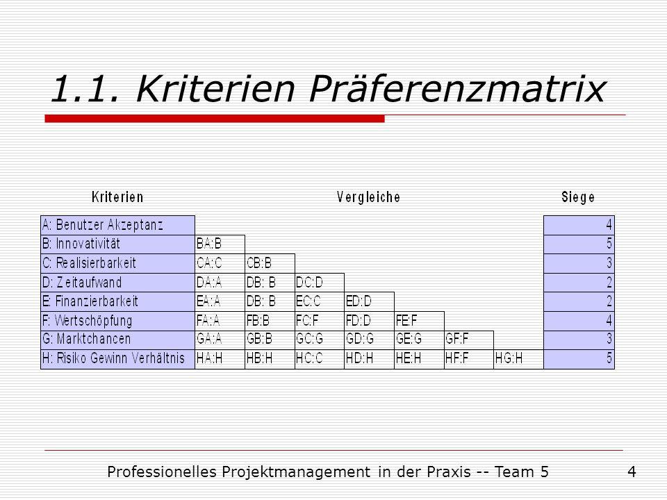 1.1. Kriterien Präferenzmatrix
