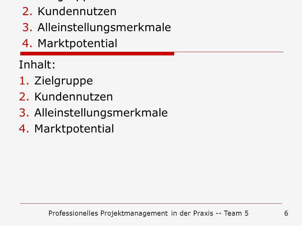 Inhalt: Zielgruppe Kundennutzen Alleinstellungsmerkmale Marktpotential