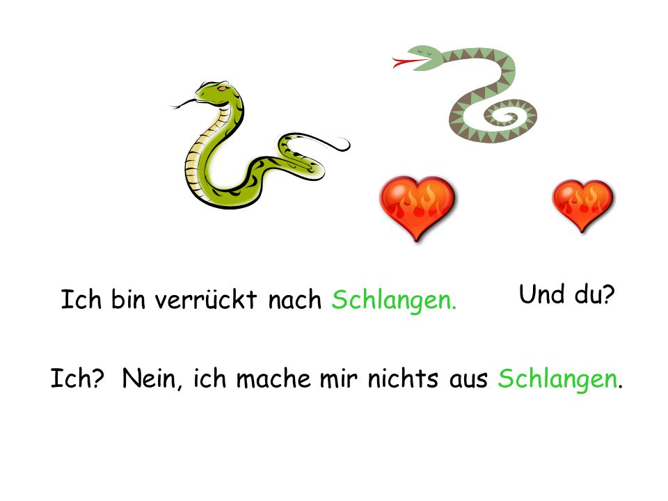 Und du Ich bin verrückt nach Schlangen. Ich Nein, ich mache mir nichts aus Schlangen.