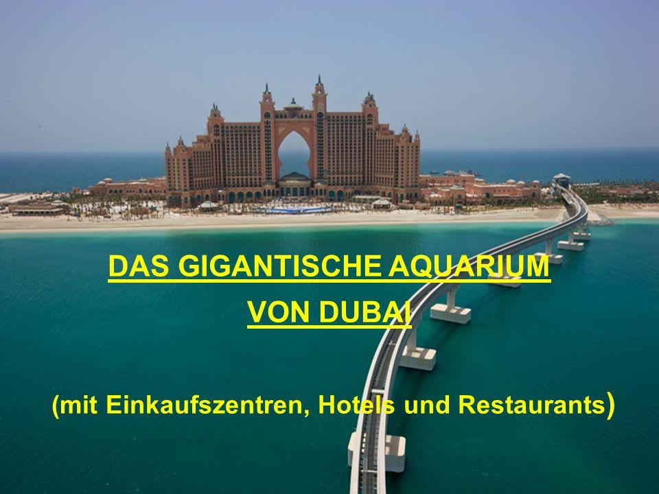 DAS GIGANTISCHE AQUARIUM (mit Einkaufszentren, Hotels und Restaurants)