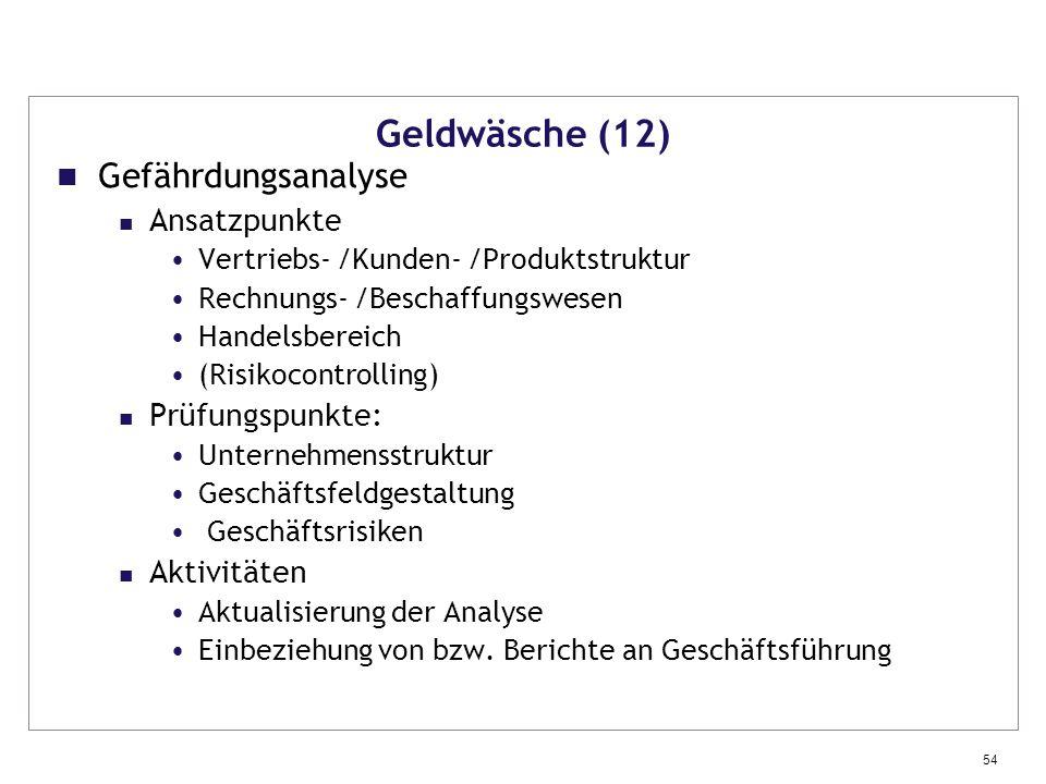 Geldwäsche (12) Gefährdungsanalyse Ansatzpunkte Prüfungspunkte: