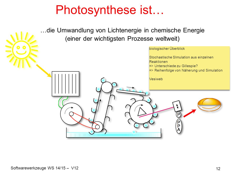 Photosynthese ist… …die Umwandlung von Lichtenergie in chemische Energie. (einer der wichtigsten Prozesse weltweit)