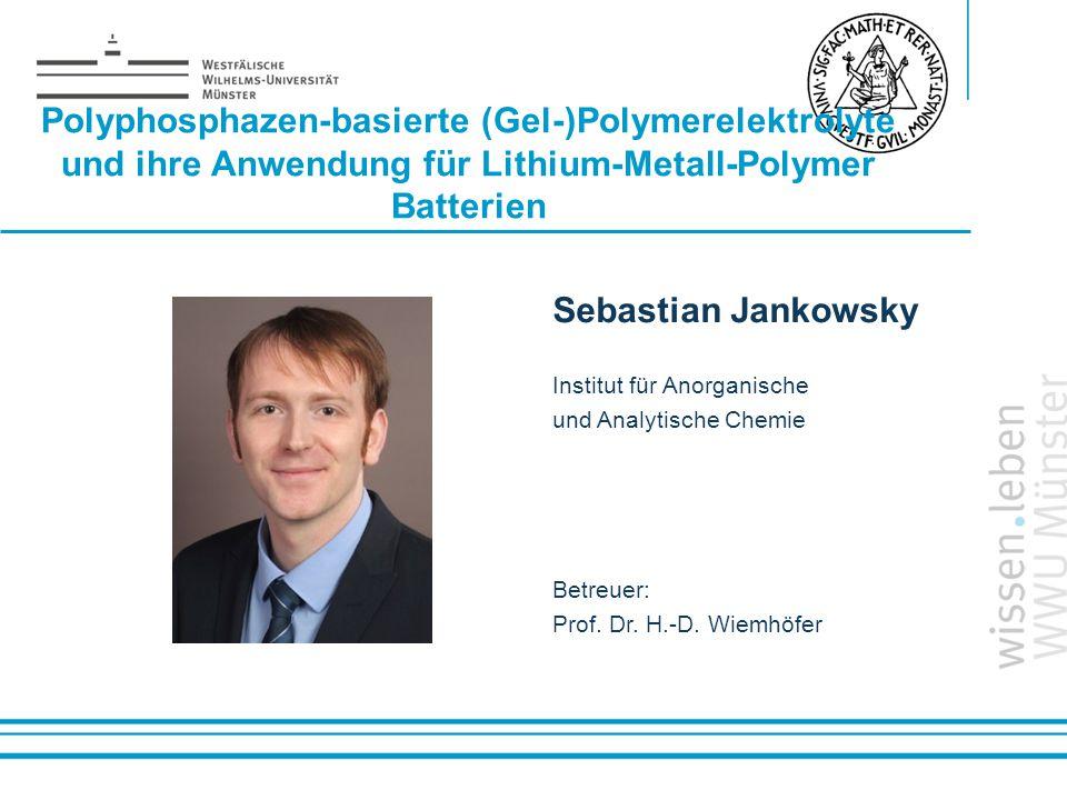 Polyphosphazen-basierte (Gel-)Polymerelektrolyte und ihre Anwendung für Lithium-Metall-Polymer Batterien
