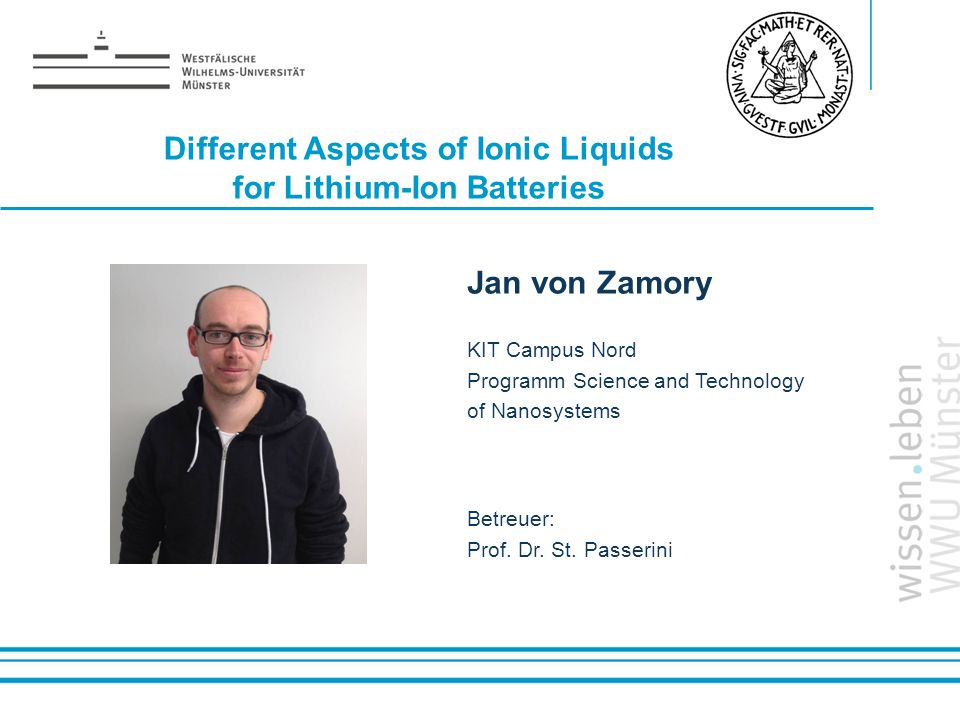 Different Aspects of Ionic Liquids for Lithium-Ion Batteries