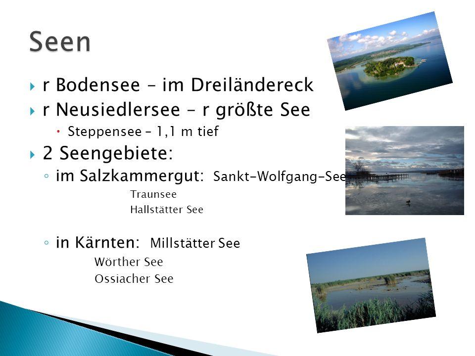 Seen r Bodensee – im Dreiländereck r Neusiedlersee – r größte See