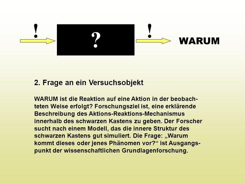 ! ! WARUM 2. Frage an ein Versuchsobjekt