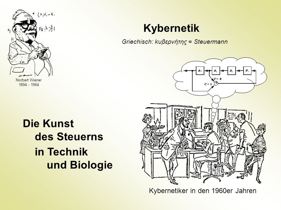 Kybernetik Die Kunst des Steuerns in Technik und Biologie