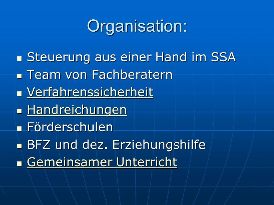 Organisation: Steuerung aus einer Hand im SSA Team von Fachberatern
