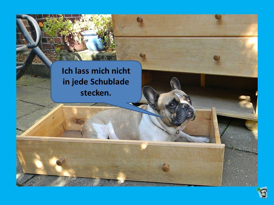 Ich lass mich nicht in jede Schublade stecken.