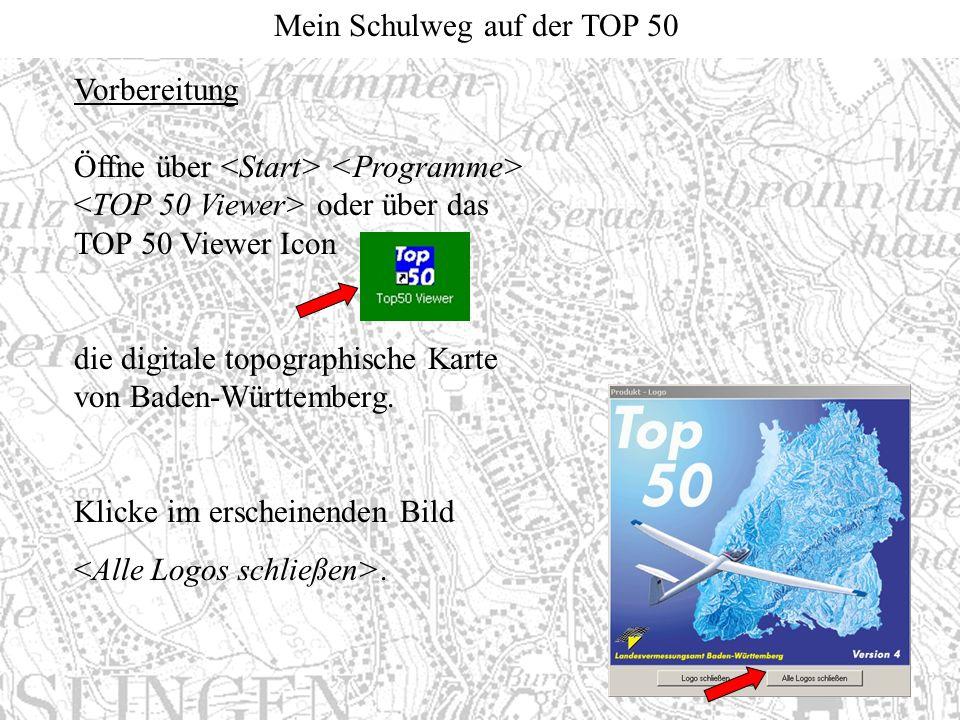 Vorbereitung Öffne über <Start> <Programme> <TOP 50 Viewer> oder über das TOP 50 Viewer Icon.