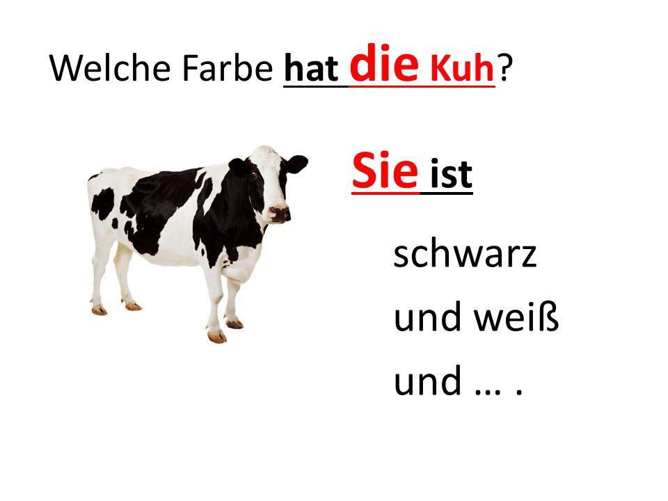 Welche Farbe hat die Kuh