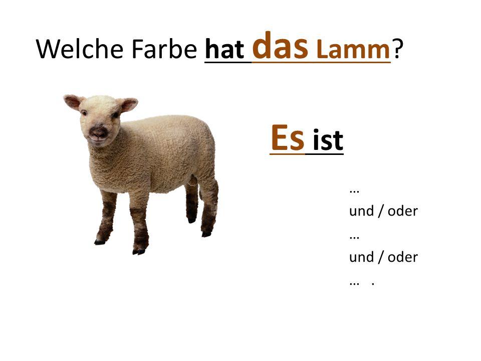Welche Farbe hat das Lamm