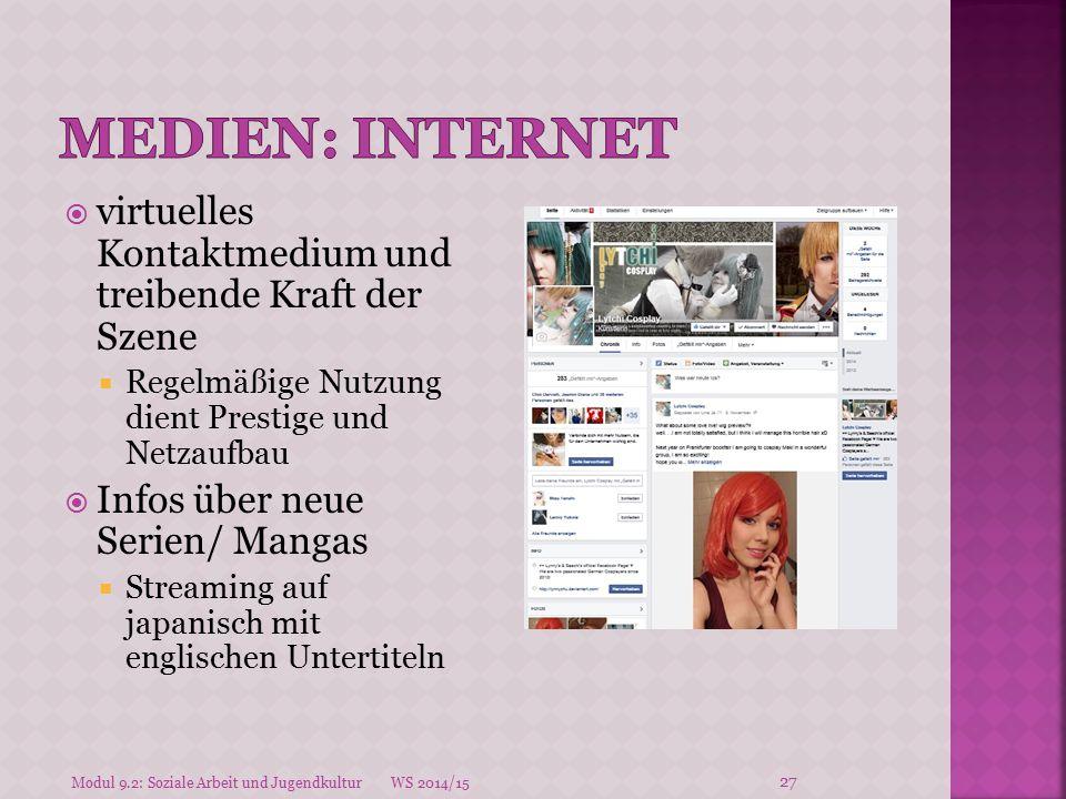 Medien: INternet virtuelles Kontaktmedium und treibende Kraft der Szene. Regelmäßige Nutzung dient Prestige und Netzaufbau.