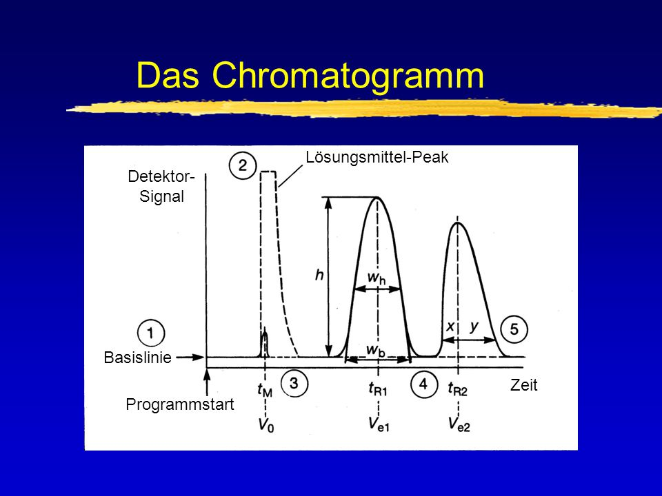 Das Chromatogramm Lösungsmittel-Peak Detektor- Signal Basislinie Zeit
