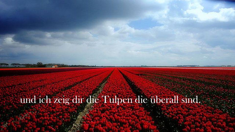 und ich zeig dir die Tulpen die überall sind.