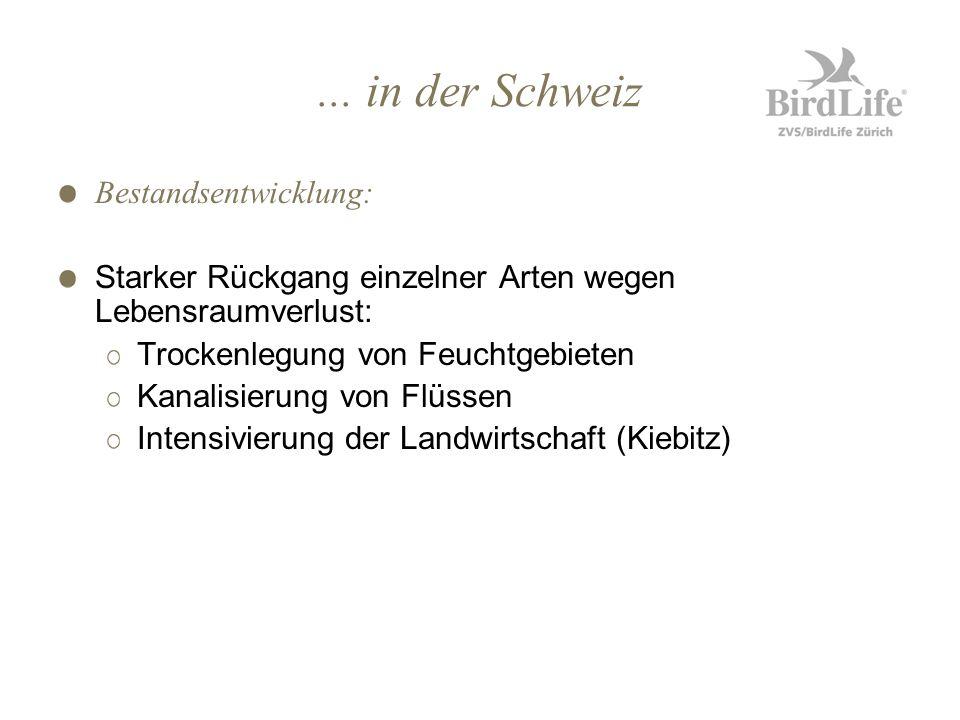 ... in der Schweiz Bestandsentwicklung: