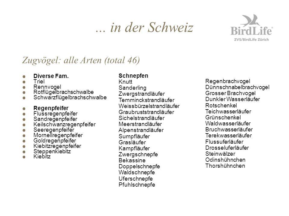 ... in der Schweiz Zugvögel: alle Arten (total 46) Diverse Fam. Triel