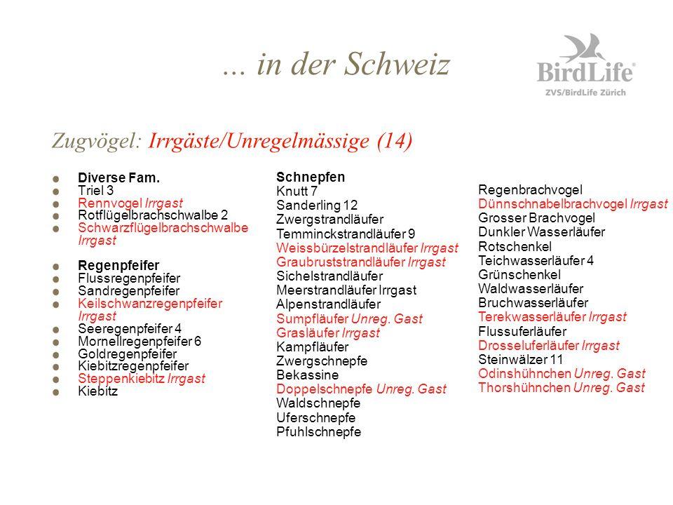 ... in der Schweiz Zugvögel: Irrgäste/Unregelmässige (14) Diverse Fam.