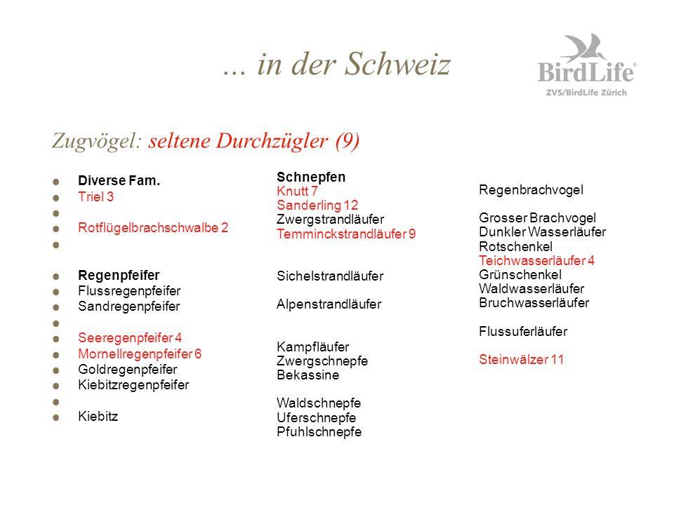 ... in der Schweiz Zugvögel: seltene Durchzügler (9) Diverse Fam.