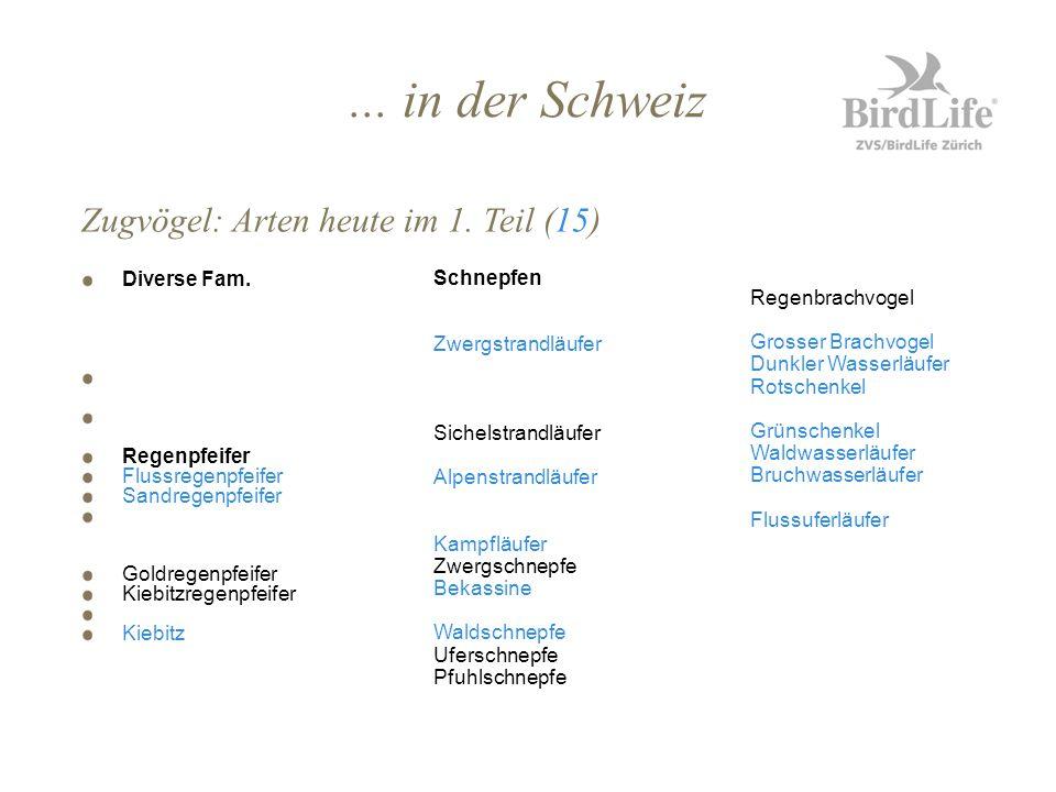 ... in der Schweiz Zugvögel: Arten heute im 1. Teil (15) Diverse Fam.